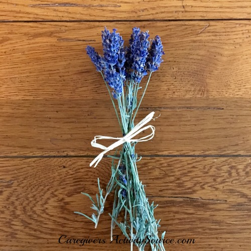 lavender flower cuttings